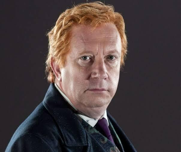 arthur weasley harry potter mark williams