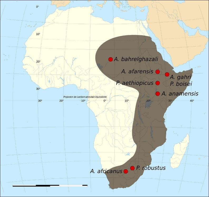Map of the fossil sites of the early hominids (4