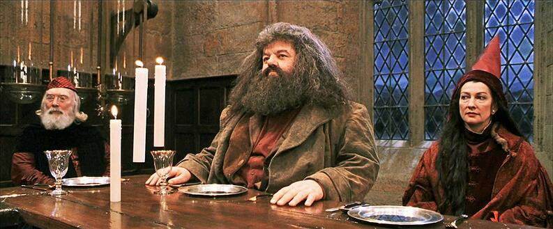 hagrid  pelicula  harry potter