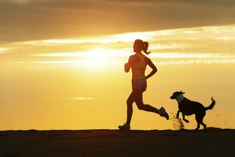 6 benefits of exercising with your pet 2