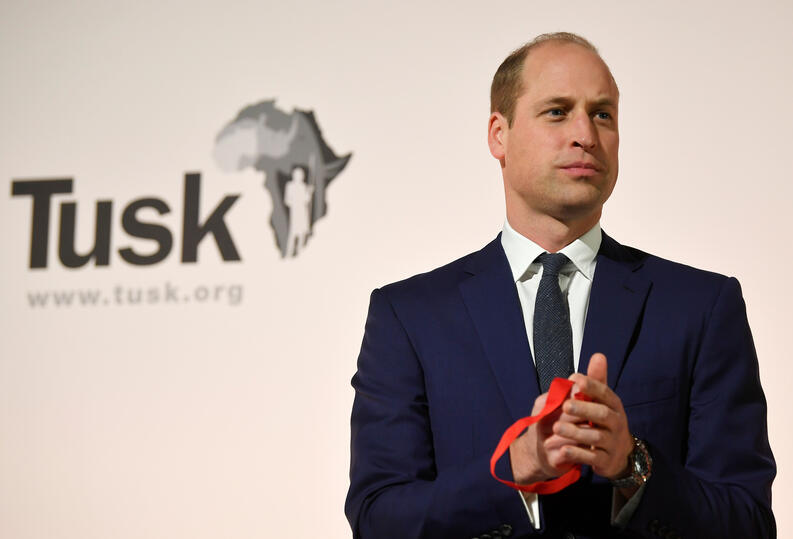 principe william tusk conservation awards 2019