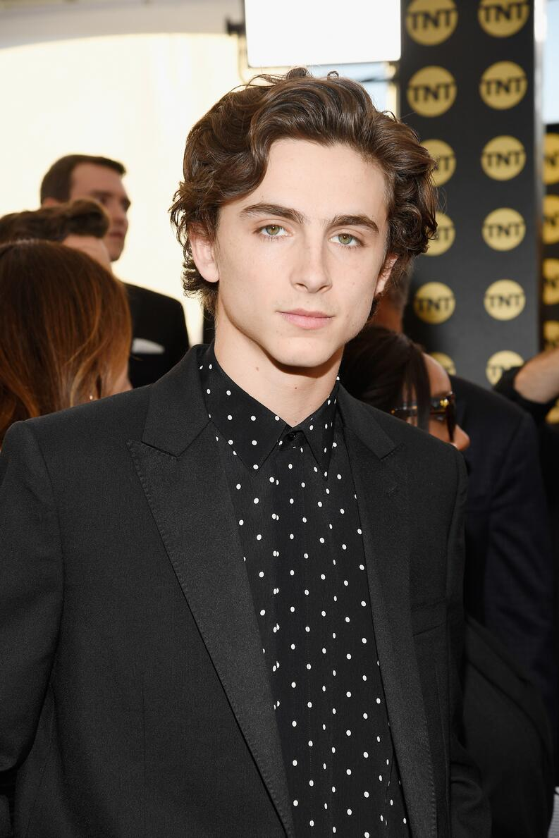 timothee chalamet sag awards 2019