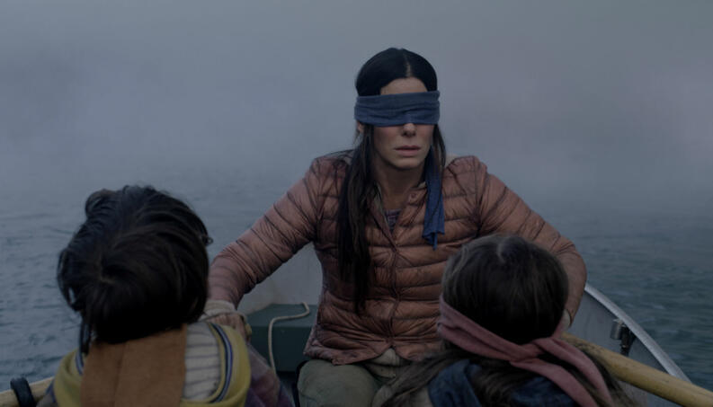 bird box sandra 1218 1400x800